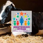 destacada-granja-escuela-montessori-dream